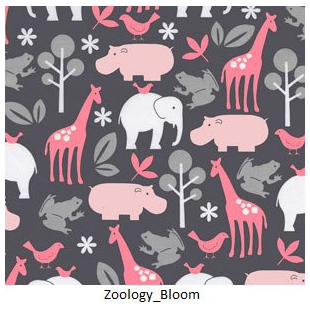 Zoology Bloom